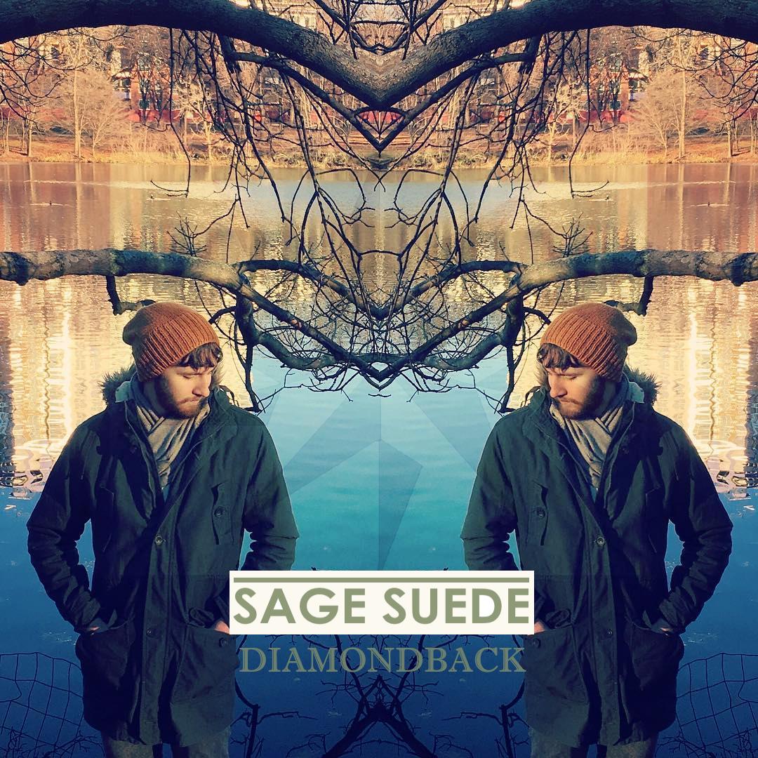 DIAMONDBACK cover 3