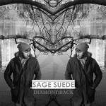 DIAMONDBACK-cover-3.4